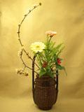 蝋梅、ガーベラ、千両、緑の葉